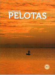 FIGURINHAS DE PELOTAS Na 2 - ALBUM COM 105 FIGURINHAS