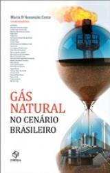 GAS NATURAL NO CENARIO BRASILEIRO